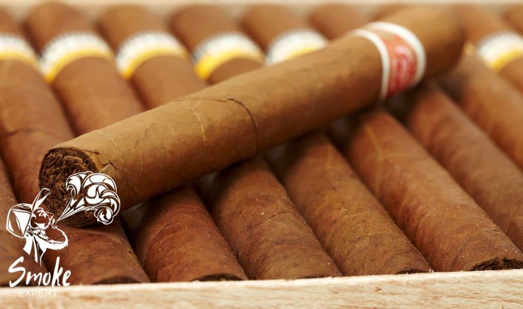 Выбираем лучшую сигару