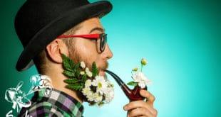 Как курение трубки может повлиять на организм