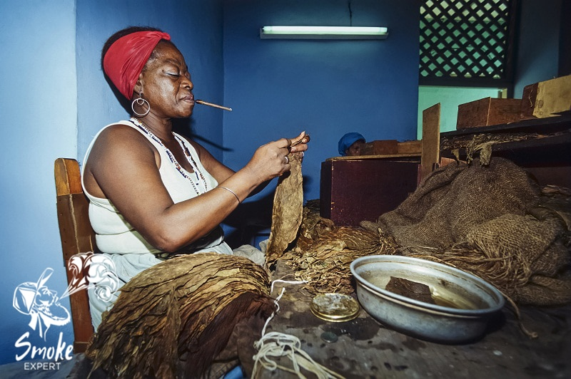 процесс производства сигар